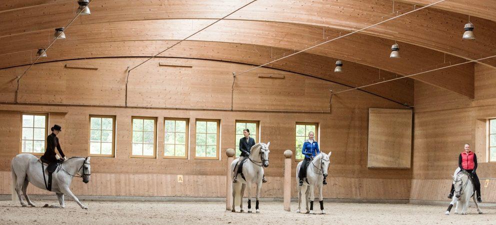Sonntägliche Morgenarbeiten 2017 – klassische Pferdeausbildung hautnah erleben