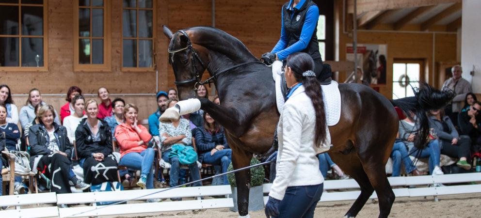 Der Pferdereisen Spezialist kommt exklusiv zum Seminartag auf Gut Rosenhof