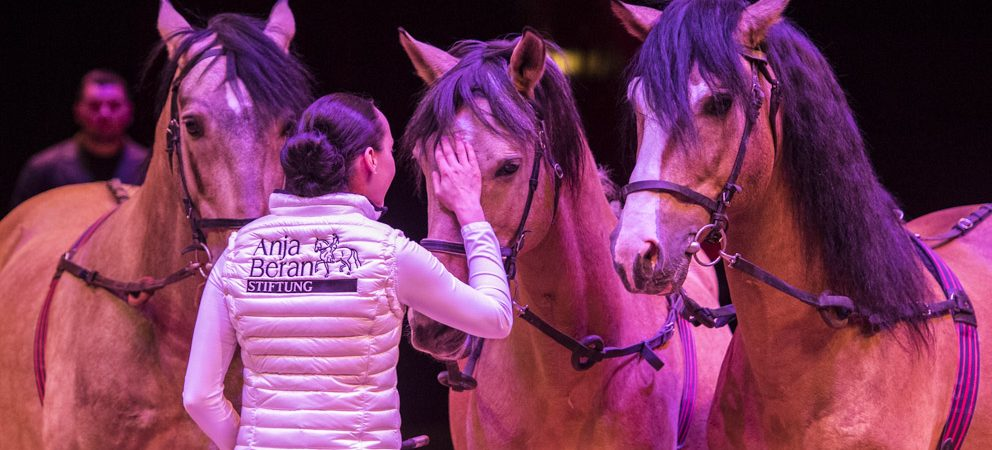8th symposium at Circus Krone in Munich on individual horse training